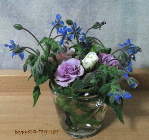 20120513_05.jpg