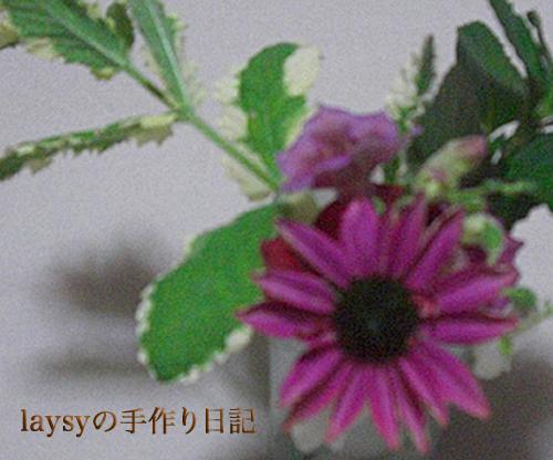 20120623-08.jpg