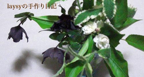 20120623-11.jpg