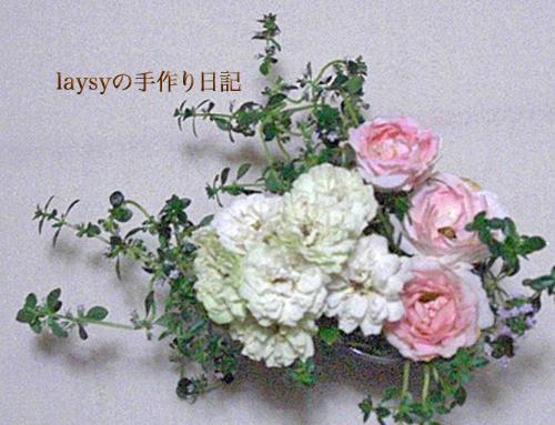 20120623-14.jpg