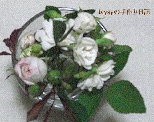 20120623-15.jpg