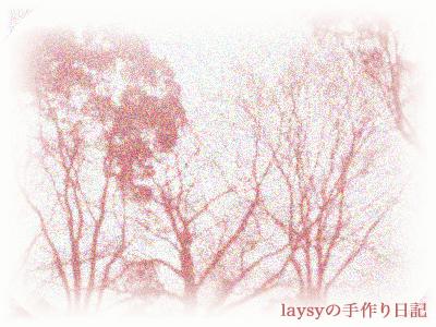 20110103-01.jpg