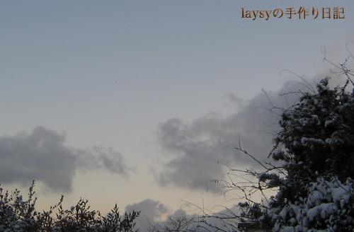 20120203_15.jpg